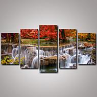 Viagem / Paisagem / Botânico / Fotografia / Realismo Impressão em tela 5 Painéis Pronto para pendurar , Horizontal