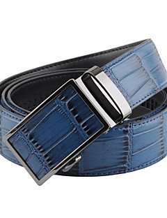Men Waist Belt,Party / Casual Alloy / Leather All Seasons
